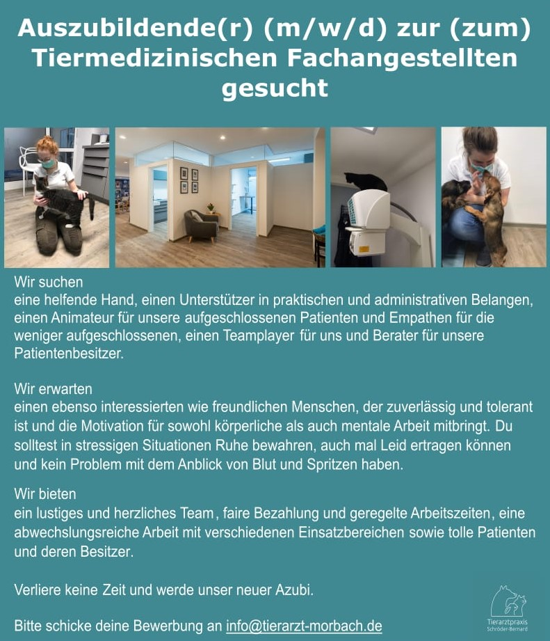 Auszubildende(r) (m/w/d) zur (zum)Tiermedizinischen Fachangestellten gesucht